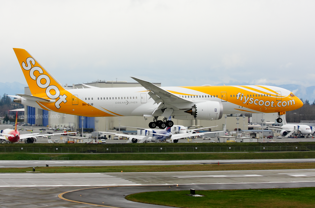 Scoot 787-9 9V-OJB at Paine Field